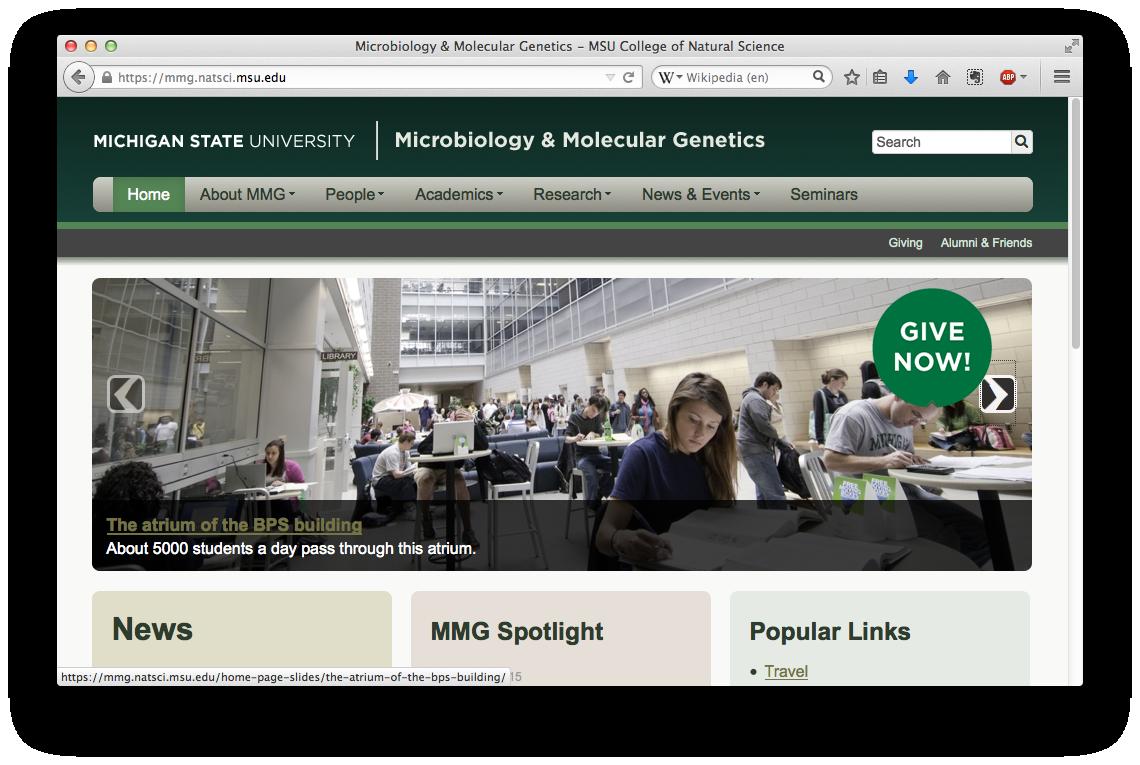 Microbiology and Molecular Genetics