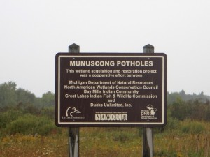 Munuscong pothole wetlands